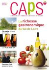 Extrait magazine CAPS n97