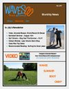 Waves Fitness &amp; Surf Ontario News July 2009