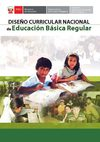 DISEO CURRICULAR NACIONAL PERU