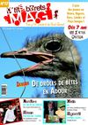 P&#039;tits Brets Mag n12 / Dcembre 2011