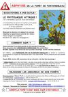 PhytoTract-A4-2011-02-26